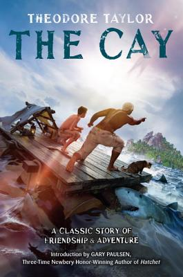 The Cay book cover