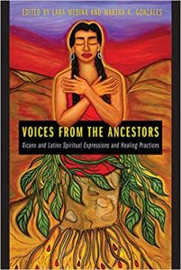 Voices from the Ancestors book cover